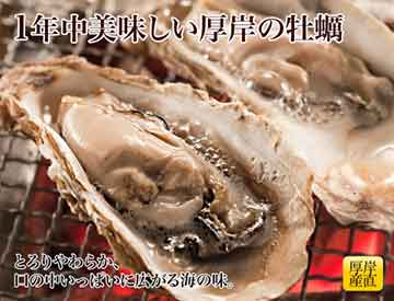 写真:厚岸産殻付牡蠣
