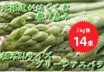 写真:今年も発送開始!! 北海道の春一番 シャキシャキの「グリーンアスパラ」朝獲り2Kg強14束 厳選した2Lサイズのみ送ります