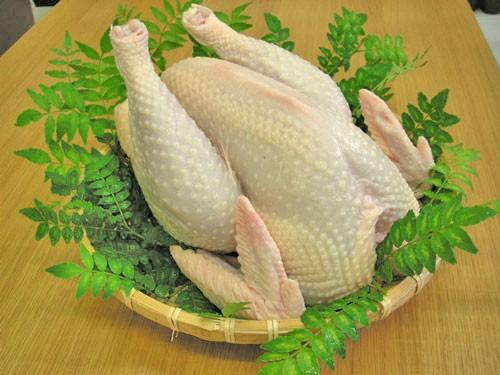 写真:青森県特産地鶏 青森シャモロック 【中抜き丸鶏】