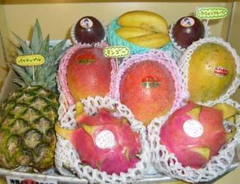 写真:特選トロピカルフルーツ大盛りセット