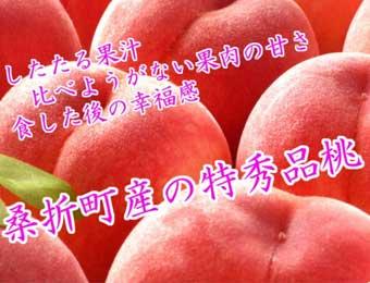 写真:福島県 献上桃の郷『桑折町産』特秀品桃