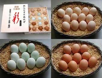 写真:三種卵 【彩(いろどり)】 20個木箱入 烏骨鶏卵:6個、アローカナ卵:8個、黒どり卵:6個