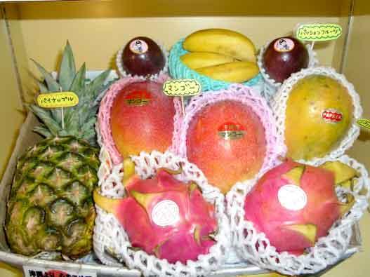 特選トロピカルフルーツ大盛りセット
